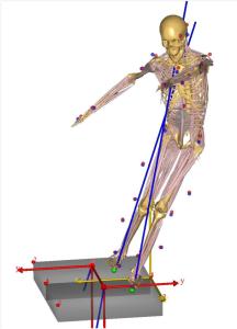 Astrid van der Zijden, Orthopaedic Research Laboratory (ORL) Nijmegen, Fig.2