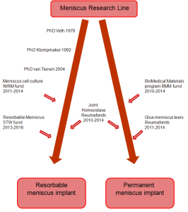 Development of the Meniscus Research Line since 1978.
